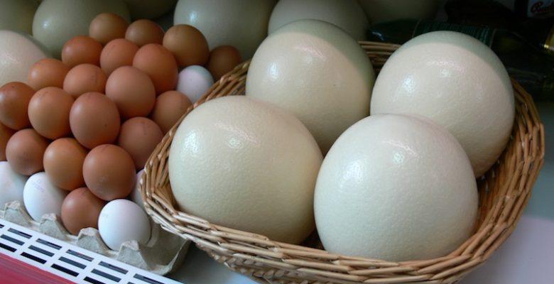 по самое яйцо фото