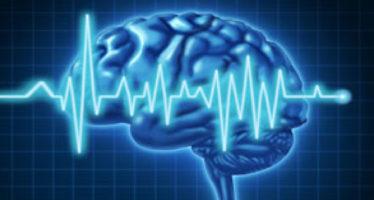 Народные методы лечения эпилепсии травами
