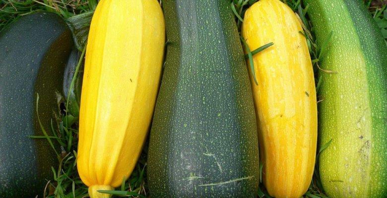 Кабачки, полезные свойства кабачков, приготовление кабачков