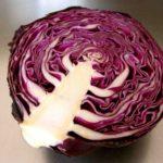 Капуста краснокачанная, состав капусты и свойства капусты