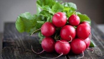 Свойства редиса, витамины в редисе