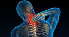 остеохондроз, виды, симптомы, лечение
