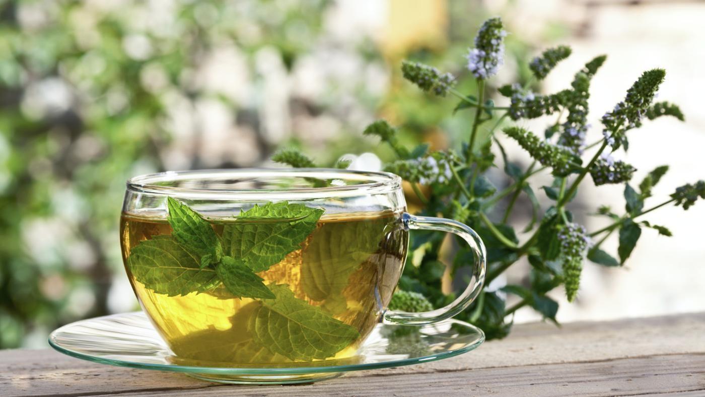 отвар пустырника и чай