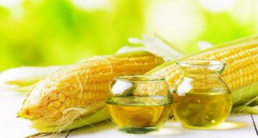 польза кукурузного масла