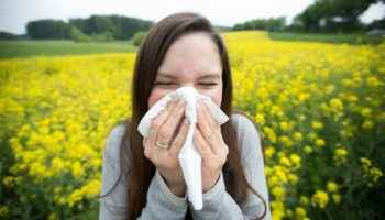 Аллергии и антигистаминные препараты