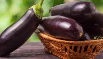 Баклажан: полезные свойства, хранение и приготовление