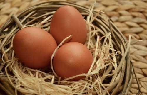Куриное яйцо — калорийность и польза
