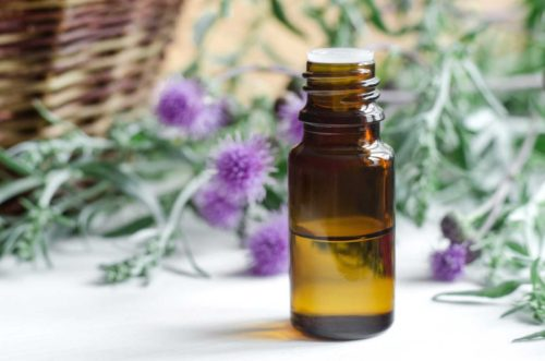 Масло расторопши, применение в косметологии, медицине