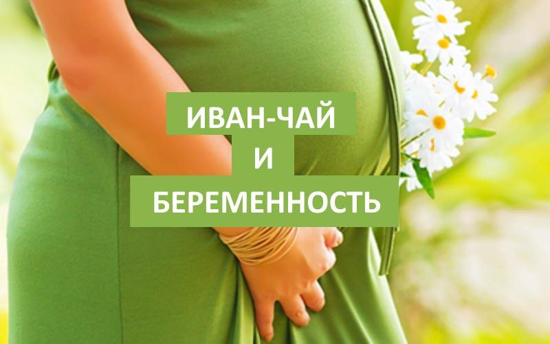 иван-чай в период беременности