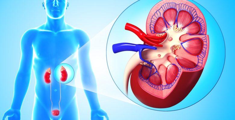Лечение пиелонефрита беременных народными средствами 13